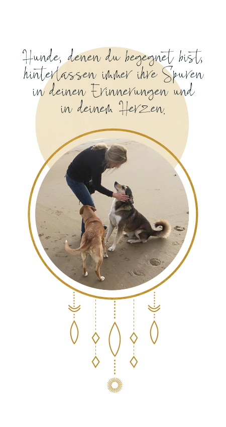 Strandhunde