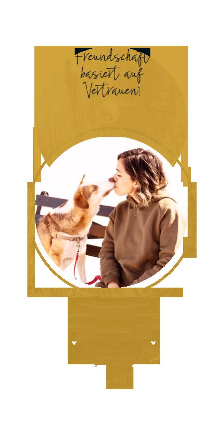 Freundschaft Hund Mensch
